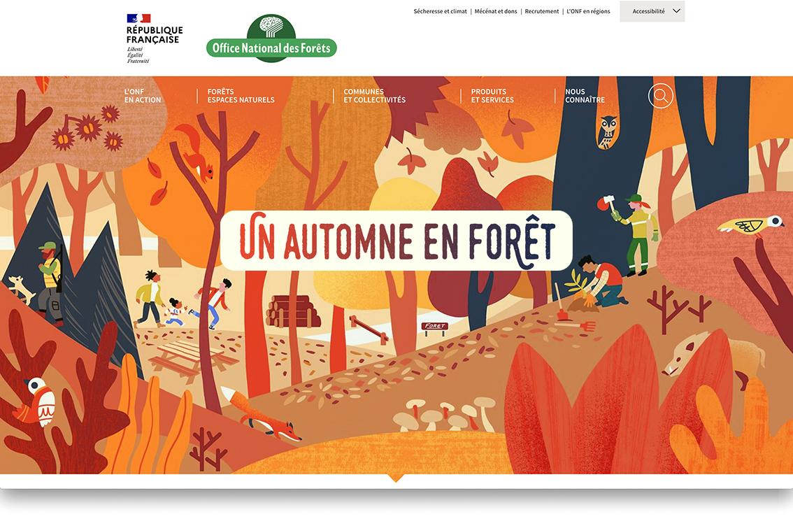 Un automne en forêt avec l'Office National des Forêts, Clod illustrateur