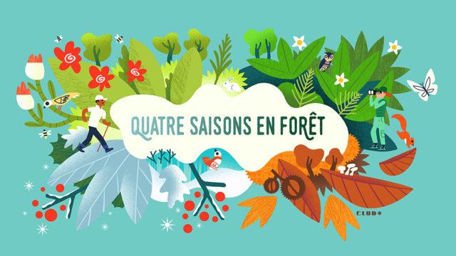 Clod illustration Office National des Forêts, les quatre saisons