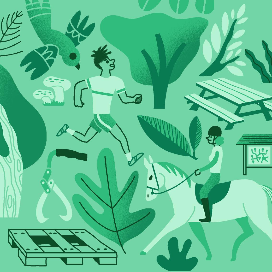 Clod animation raconte-moi la forêt pour le site de l'Office National des Forêts